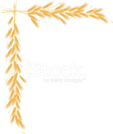 Protein Indicators, Quality, and Yield of Winter Durum